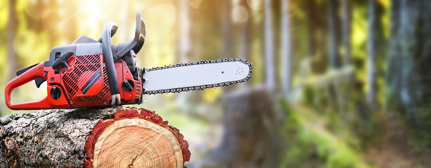 Chainsaw on wooden