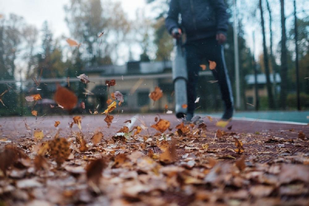 blowing fallen leaves