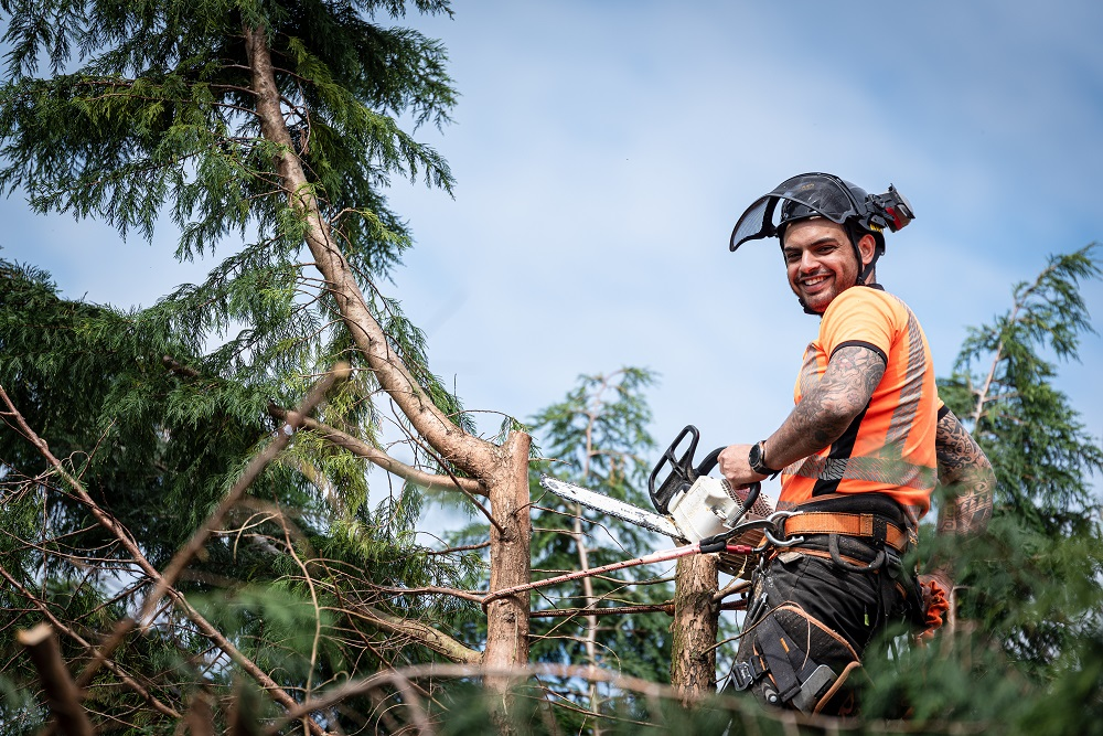 man happily pruning a tree