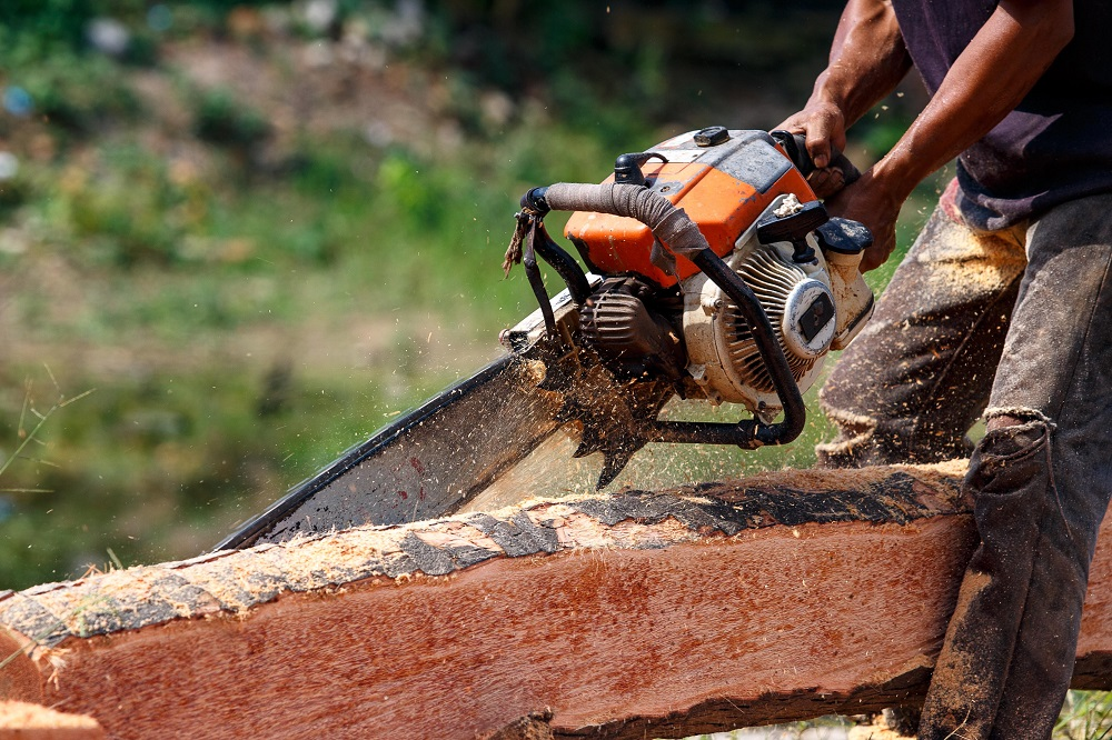 logger using a chainsaw