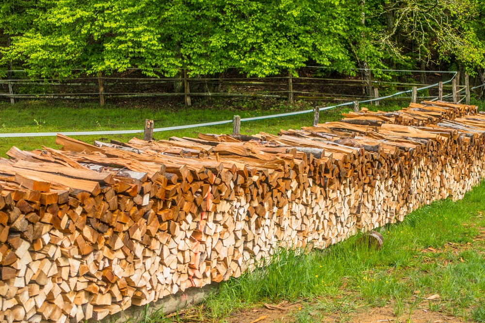 wet stack of firewood
